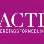 DiSara Ekonomikonsulter AB / TACTIC Företagsförmedling